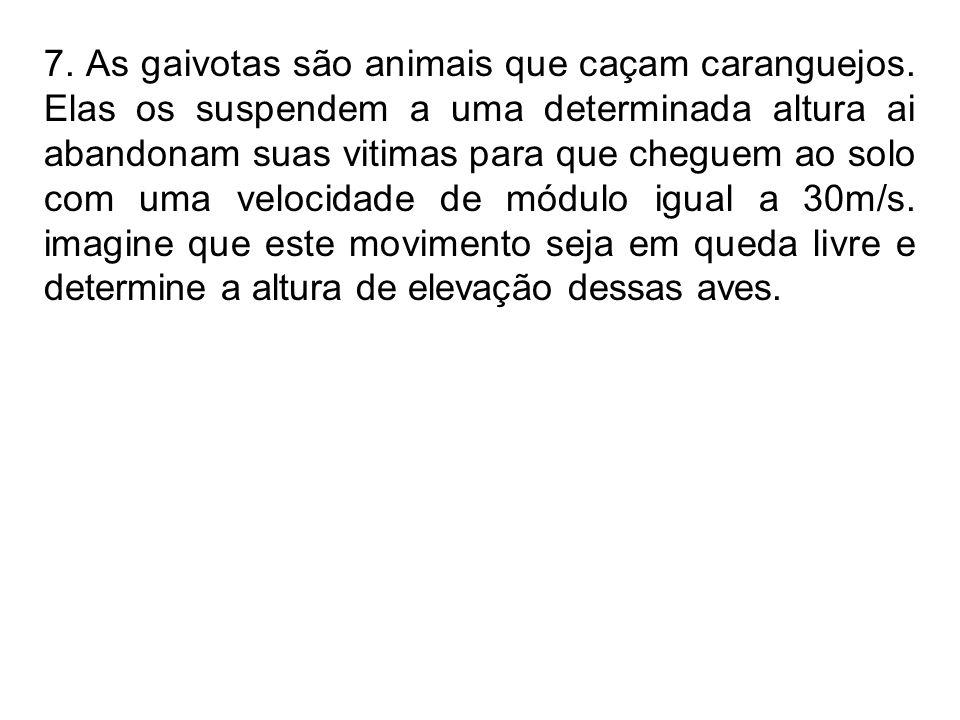 7. As gaivotas são animais que caçam caranguejos. Elas os suspendem a uma determinada altura ai abandonam suas vitimas para que cheguem ao solo com um