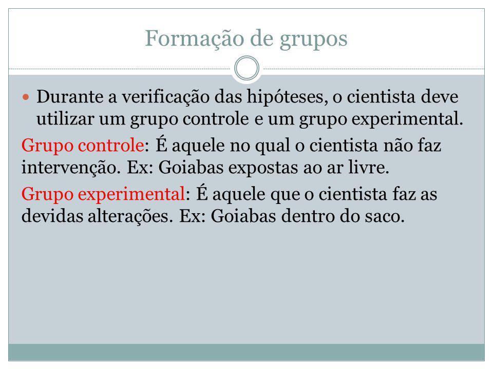 Formação de grupos Durante a verificação das hipóteses, o cientista deve utilizar um grupo controle e um grupo experimental. Grupo controle: É aquele