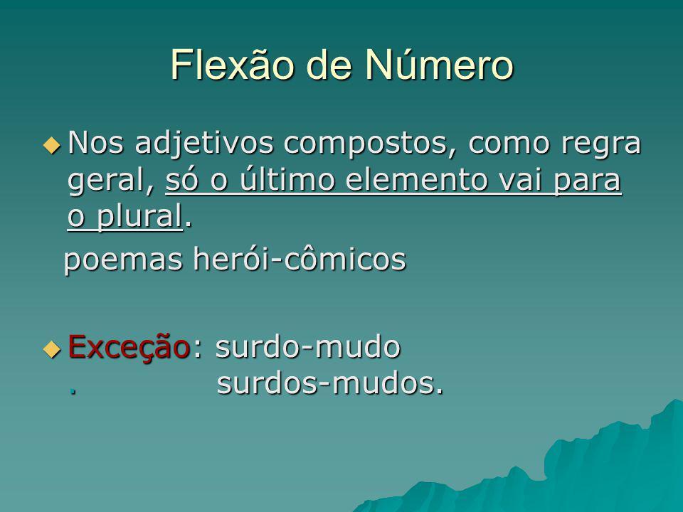 Flexão de Número Nos adjetivos compostos, como regra geral, só o último elemento vai para o plural. Nos adjetivos compostos, como regra geral, só o úl