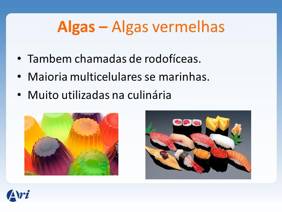 Algas – Algas vermelhas Tambem chamadas de rodofíceas. Maioria multicelulares se marinhas. Muito utilizadas na culinária