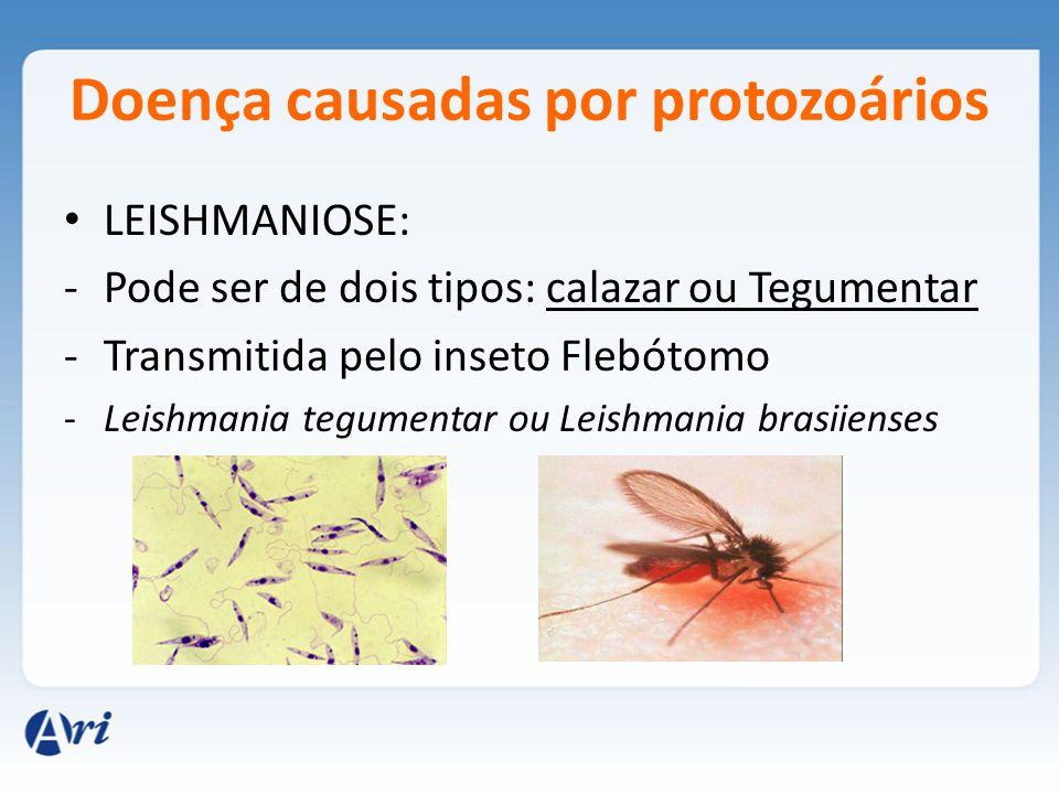 Doença causadas por protozoários LEISHMANIOSE: -Pode ser de dois tipos: calazar ou Tegumentar -Transmitida pelo inseto Flebótomo -Leishmania tegumentar ou Leishmania brasiienses