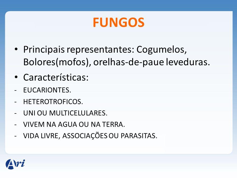 FUNGOS Principais representantes: Cogumelos, Bolores(mofos), orelhas-de-paue leveduras. Características: -EUCARIONTES. -HETEROTROFICOS. -UNI OU MULTIC