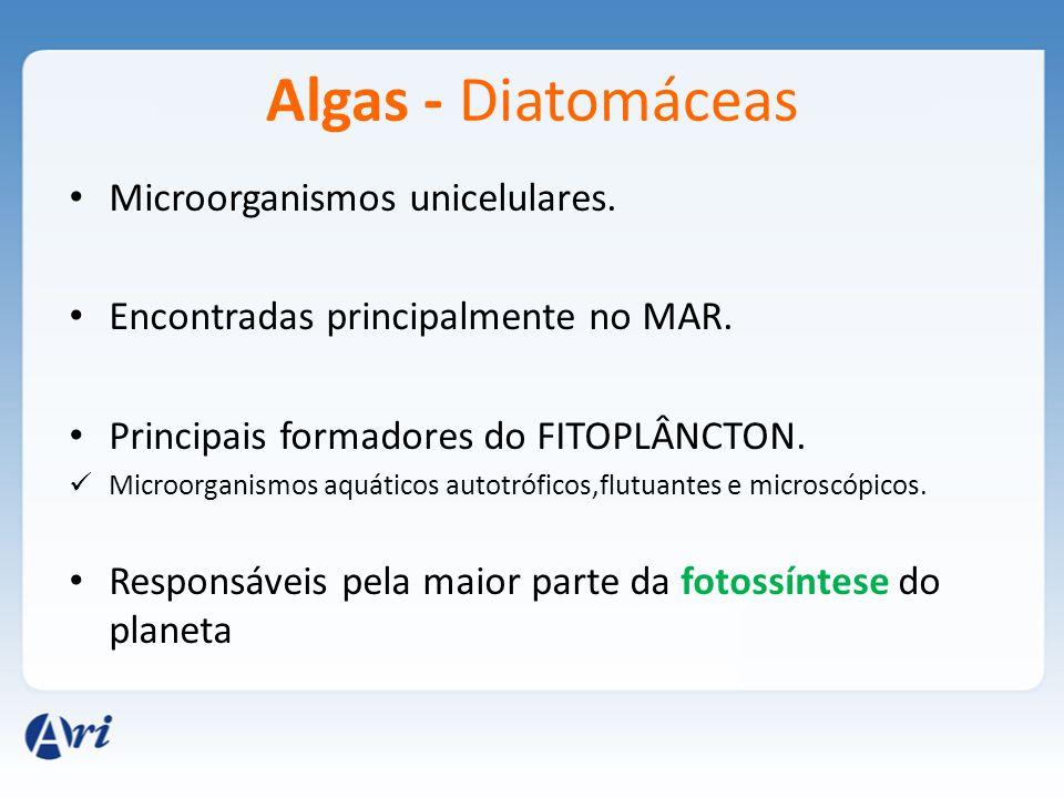 Algas - Diatomáceas Importantes para a produção de tijolos, pastas para polimento, cremes dentais e outros cosméticos.