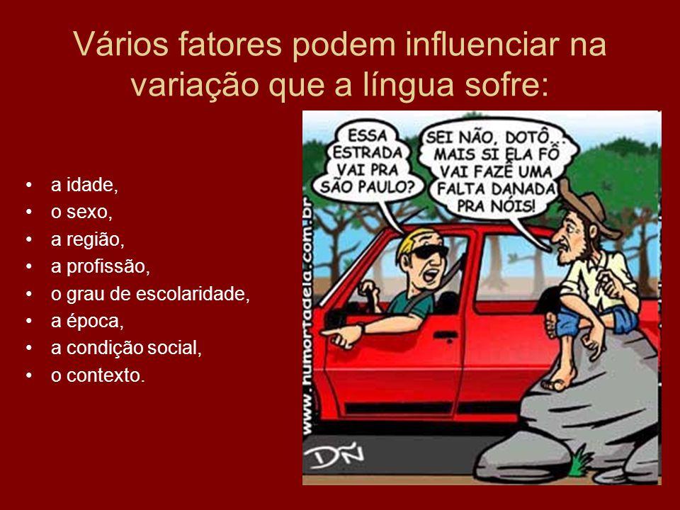 Vários fatores podem influenciar na variação que a língua sofre: a idade, o sexo, a região, a profissão, o grau de escolaridade, a época, a condição s