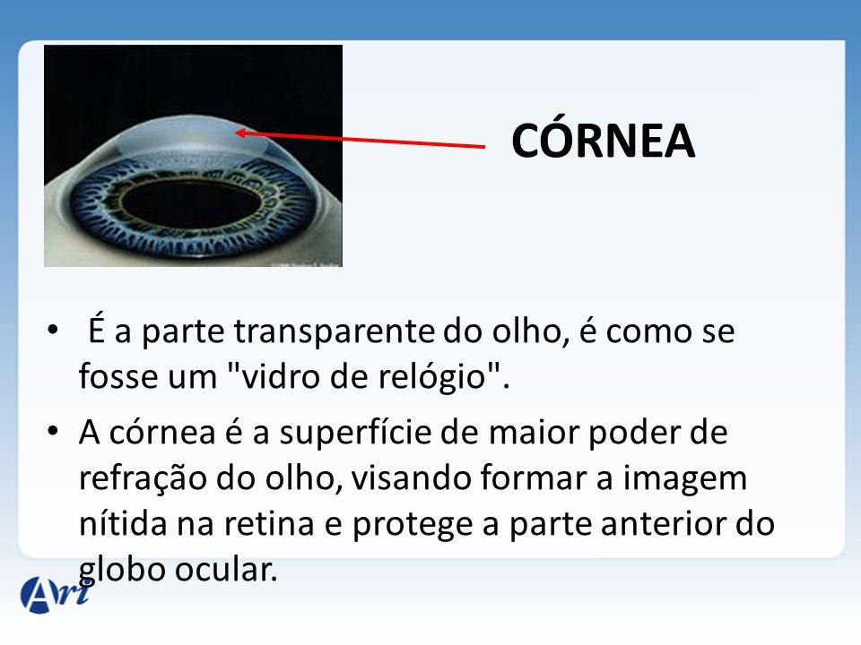 CÓRNEA É a parte transparente do olho, é como se fosse um
