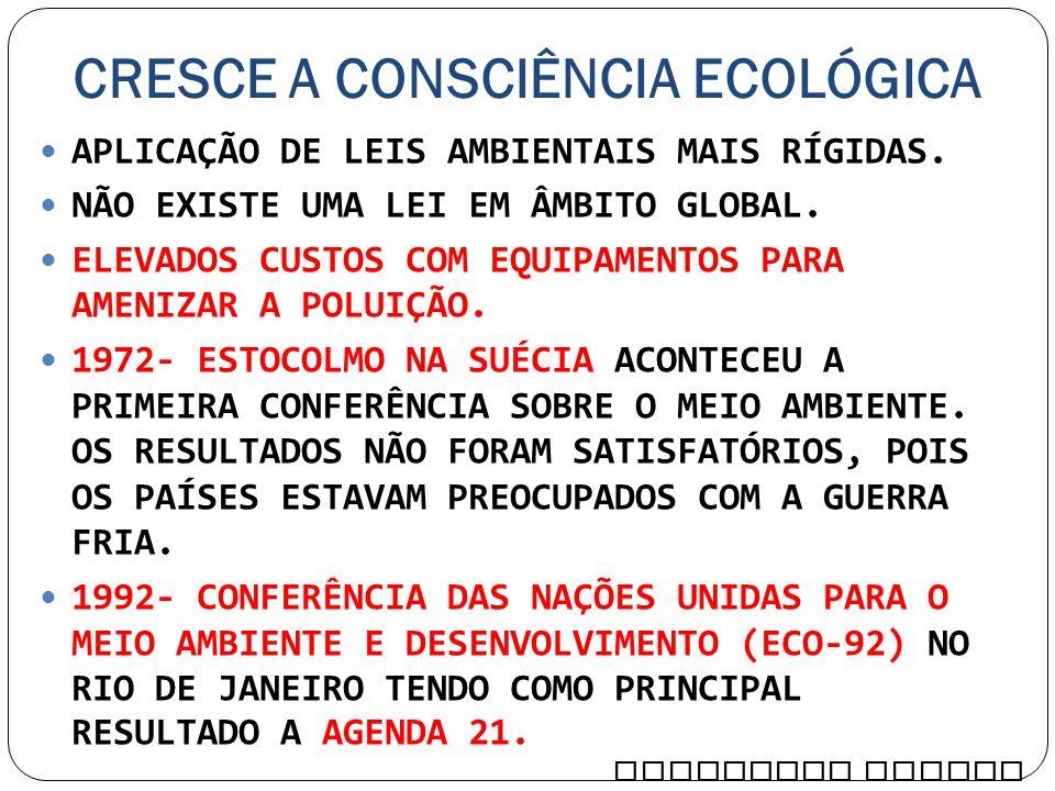 CRESCE A CONSCIÊNCIA ECOLÓGICA APLICAÇÃO DE LEIS AMBIENTAIS MAIS RÍGIDAS. NÃO EXISTE UMA LEI EM ÂMBITO GLOBAL. ELEVADOS CUSTOS COM EQUIPAMENTOS PARA A