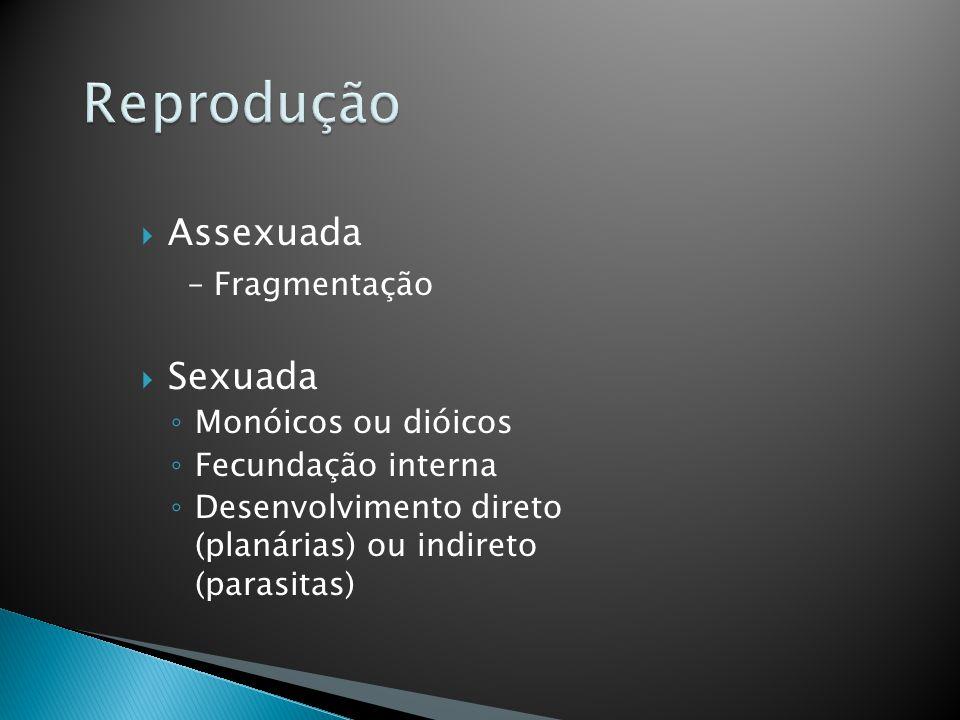 Assexuada – Fragmentação Sexuada Monóicos ou dióicos Fecundação interna Desenvolvimento direto (planárias) ou indireto (parasitas)