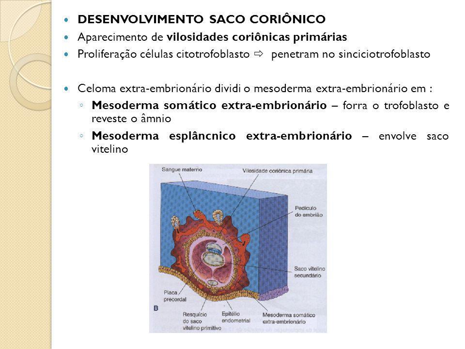 Mesoderma somático extra-embrionário e 2 camadas do trofoblasto córion Córion forma parede saco coronário (saco de gestação) Saco coronário embrião, saco amniótico e vitelino estão suspensos pelo pedículo do embrião Celoma extra-embrionário cavidade coriônica Formação placa precordal área espessada disco bilaminar futuro local boca e região cabeça