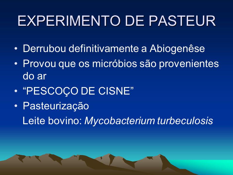 EXPERIMENTO DE PASTEUR Derrubou definitivamente a Abiogenêse Provou que os micróbios são provenientes do ar PESCOÇO DE CISNE Pasteurização Leite bovin