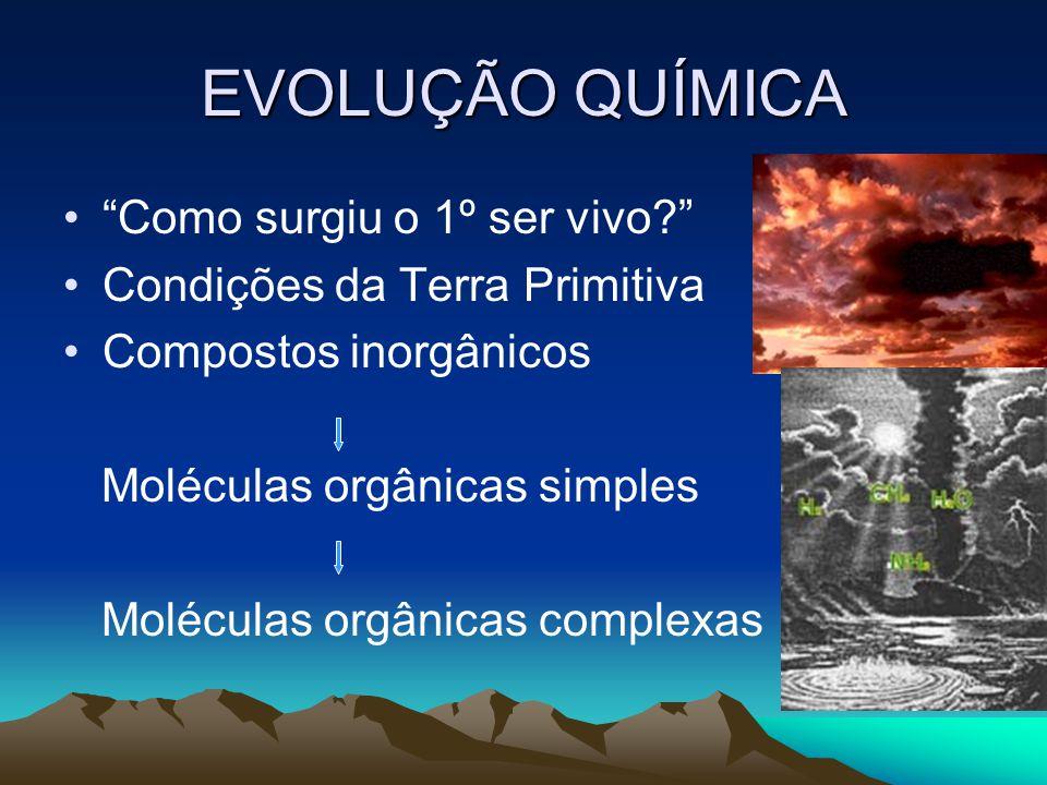 EVOLUÇÃO QUÍMICA Como surgiu o 1º ser vivo? Condições da Terra Primitiva Compostos inorgânicos Moléculas orgânicas simples Moléculas orgânicas complex