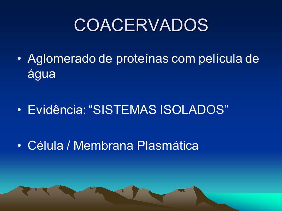 COACERVADOS Aglomerado de proteínas com película de água Evidência: SISTEMAS ISOLADOS Célula / Membrana Plasmática