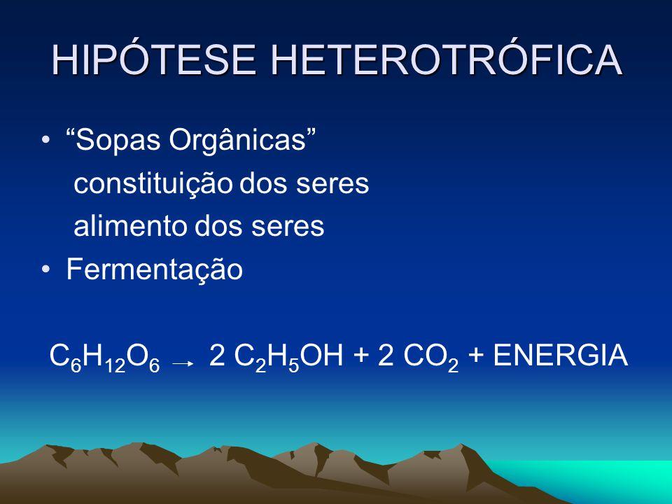 HIPÓTESE HETEROTRÓFICA Sopas Orgânicas constituição dos seres alimento dos seres Fermentação C 6 H 12 O 6 2 C 2 H 5 OH + 2 CO 2 + ENERGIA