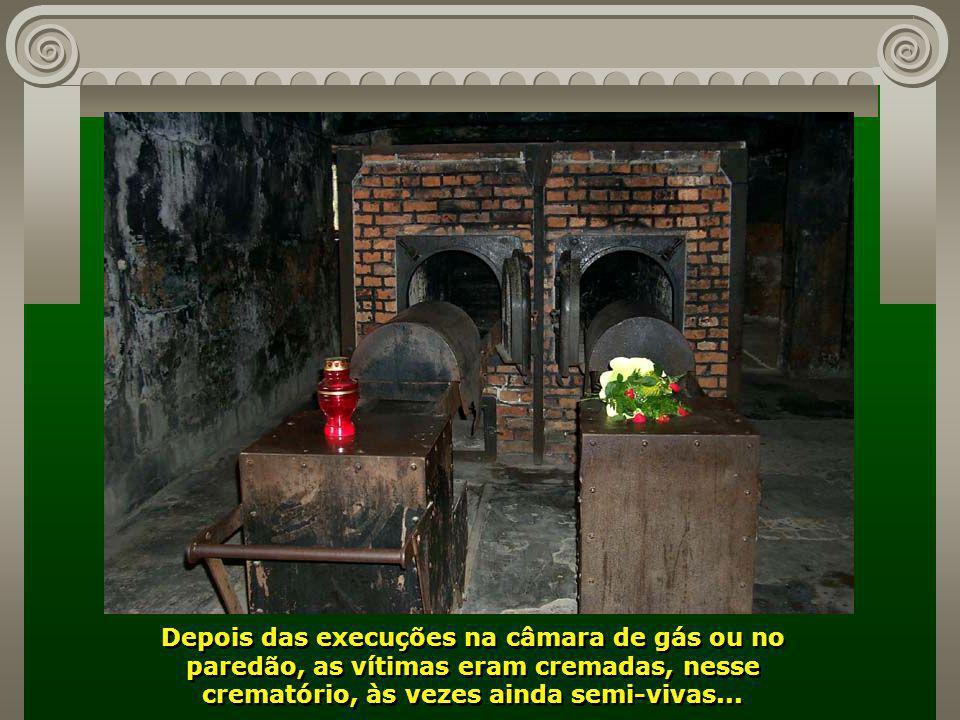 Algumas tinham seu fim nesse paredão, outras na câmara de gás. Observe que as janelas dos pavilhões laterais eram fechadas, para que seus ocupantes nã