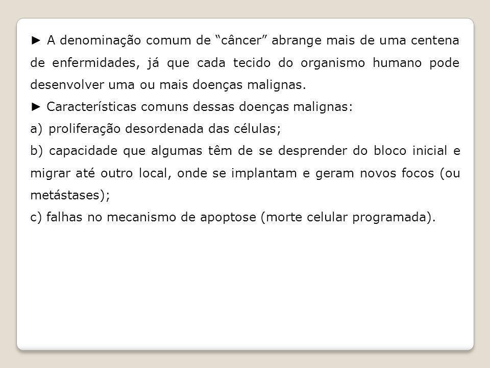 CICLO DE DIVISÃO CELULAR