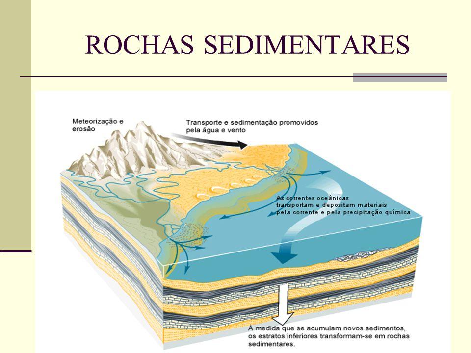 FÓSSEIS Um fóssil é qualquer vestígio de um ser vivo conservado numa rocha.