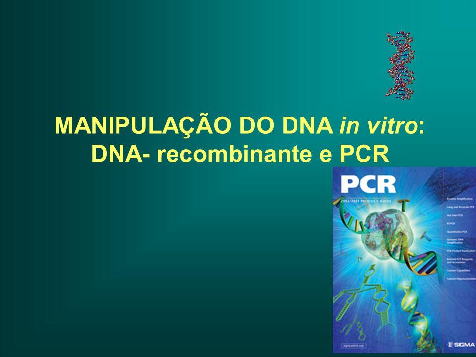 MANIPULAÇÃO DO DNA in vitro: DNA- recombinante e PCR