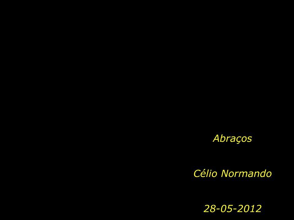 TEXTO: José Saramago Tema musical: Carino, Chris Spheeris