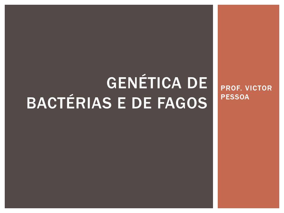 BACTERIÓFAGOS (ASPECTOS GERAIS)