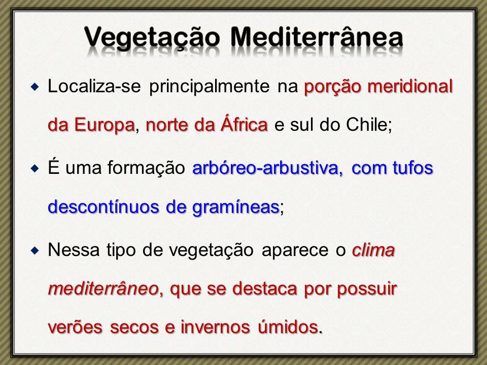 porção meridional da Europanorte da África Localiza-se principalmente na porção meridional da Europa, norte da África e sul do Chile; arbóreo-arbustiv