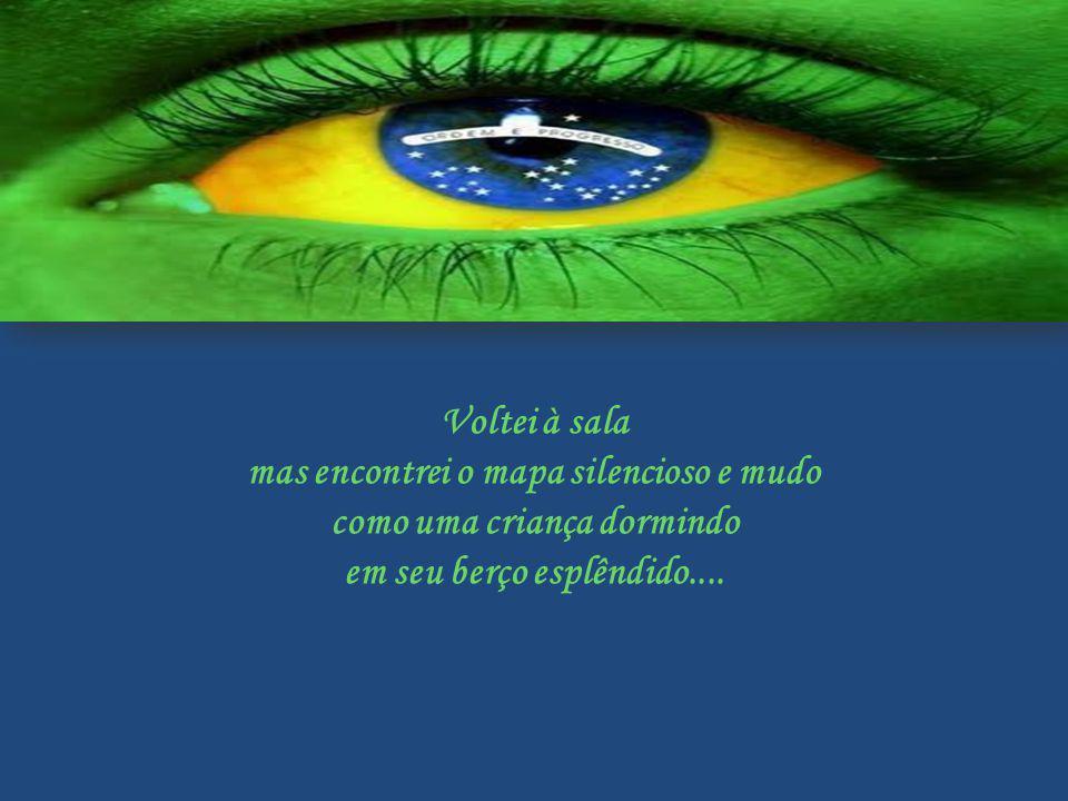 Era noite e pude ver a imagem do Cruzeiro que resplandece no lábaro que o nosso país ostenta estrelado Pensei... Conseguiremos salvar esse país sem br