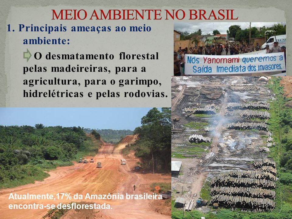 1. Principais ameaças ao meio ambiente: O desmatamento florestal pelas madeireiras, para a agricultura, para o garimpo, hidrelétricas e pelas rodovias