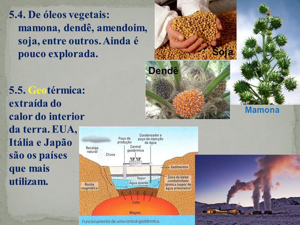 5.4. De óleos vegetais: mamona, dendê, amendoim, soja, entre outros. Ainda é pouco explorada. 5.5. Geotérmica: extraída do calor do interior da terra.