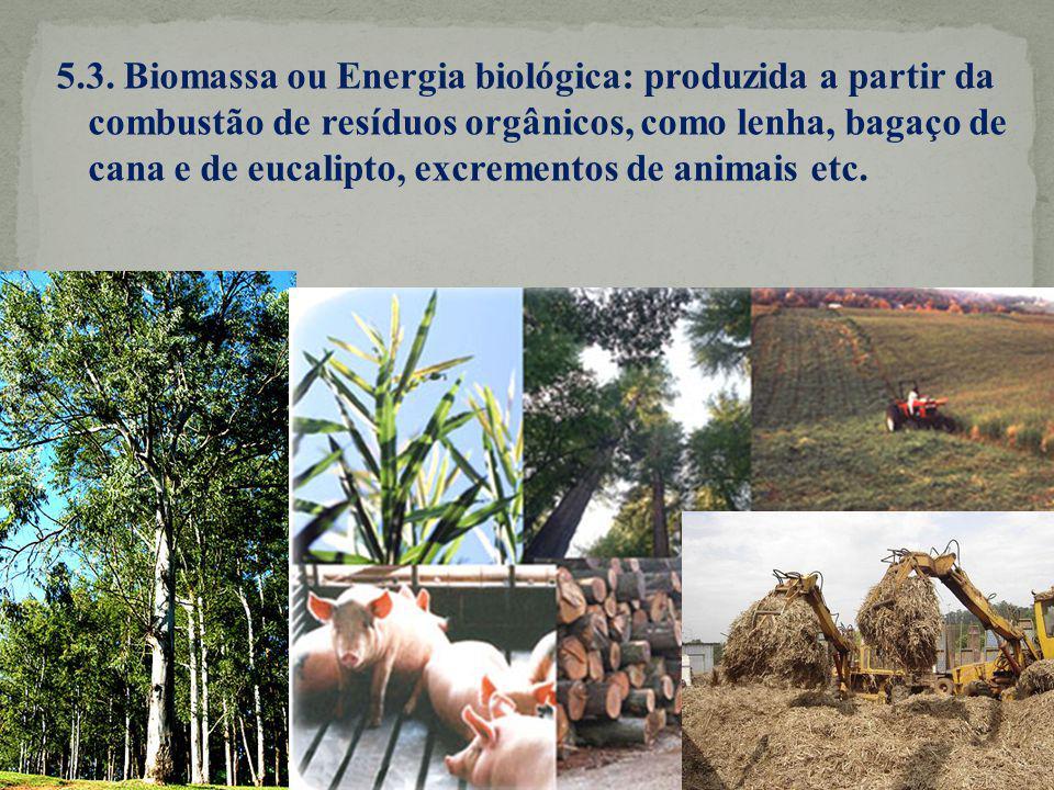5.3. Biomassa ou Energia biológica: produzida a partir da combustão de resíduos orgânicos, como lenha, bagaço de cana e de eucalipto, excrementos de a