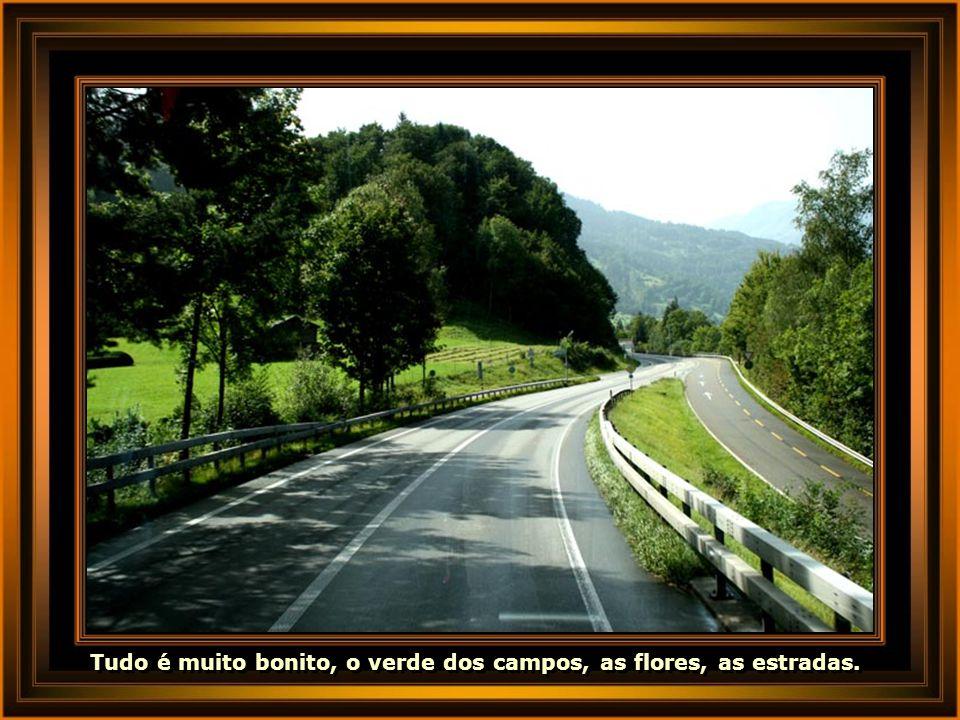 Tudo é muito bonito, o verde dos campos, as flores, as estradas.