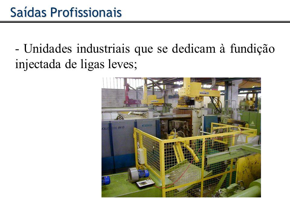 - Unidades industriais que se dedicam à fundição injectada de ligas leves; Saídas Profissionais