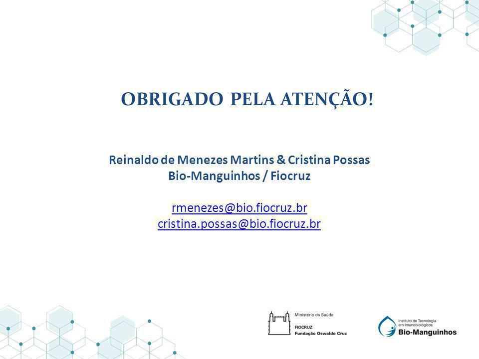 Reinaldo de Menezes Martins & Cristina Possas Bio-Manguinhos / Fiocruz rmenezes@bio.fiocruz.br cristina.possas@bio.fiocruz.br OBRIGADO PELA ATENÇÃO!