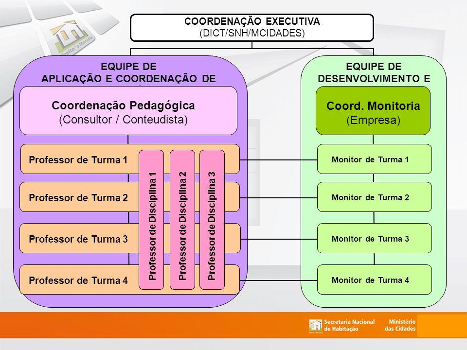 COORDENAÇÃO EXECUTIVA (DICT/SNH/MCIDADES) EQUIPE DE DESENVOLVIMENTO E SUPORTE Coord.