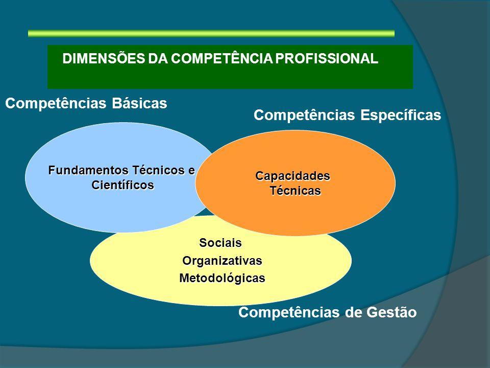 Sociais Organizativas Organizativas Metodológicas Metodológicas Fundamentos Técnicos e Científicos DIMENSÕES DA COMPETÊNCIA PROFISSIONAL Competências de Gestão Competências Específicas Competências Básicas CapacidadesTécnicas