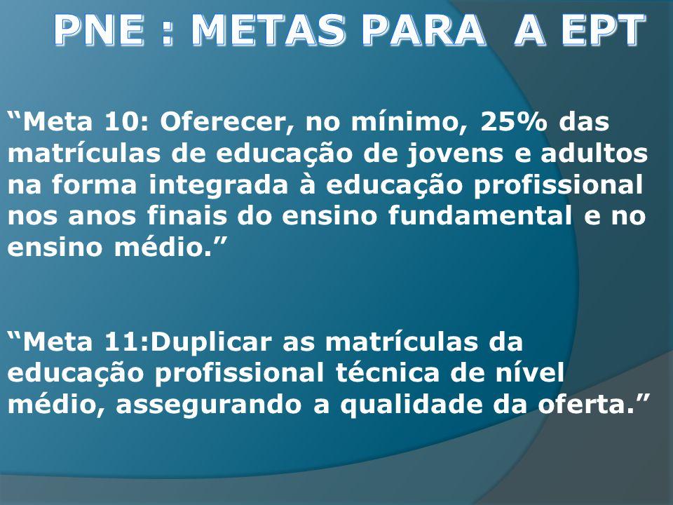 Meta 10: Oferecer, no mínimo, 25% das matrículas de educação de jovens e adultos na forma integrada à educação profissional nos anos finais do ensino fundamental e no ensino médio.