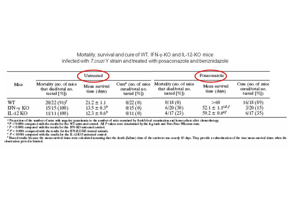 Mortality, survival and cure of WT, IFN-γ-KO and IL-12-KO mice infected with T.cruzi Y strain and treated with posaconazole and benznidazole