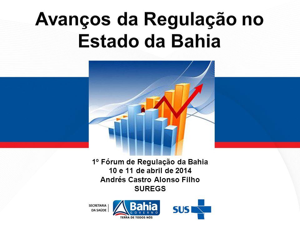 1º Fórum de Regulação da Bahia 10 e 11 de abril de 2014 Andrés Castro Alonso Filho SUREGS