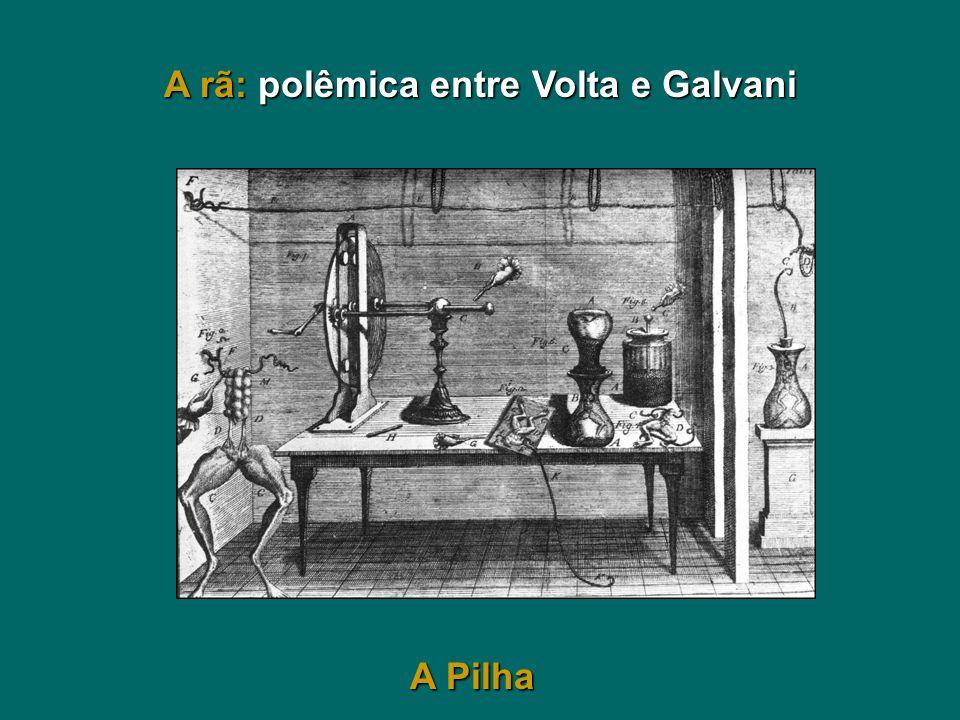 A rã: polêmica entre Volta e Galvani A Pilha