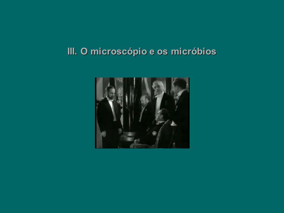 III. O microscópio e os micróbios