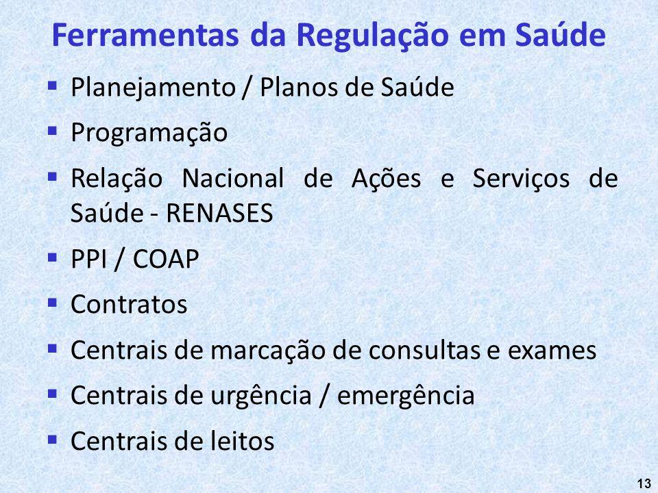 13 Planejamento / Planos de Saúde Programação Relação Nacional de Ações e Serviços de Saúde - RENASES PPI / COAP Contratos Centrais de marcação de con