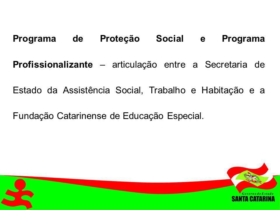 Programa de Proteção Social e Programa Profissionalizante – articulação entre a Secretaria de Estado da Assistência Social, Trabalho e Habitação e a F