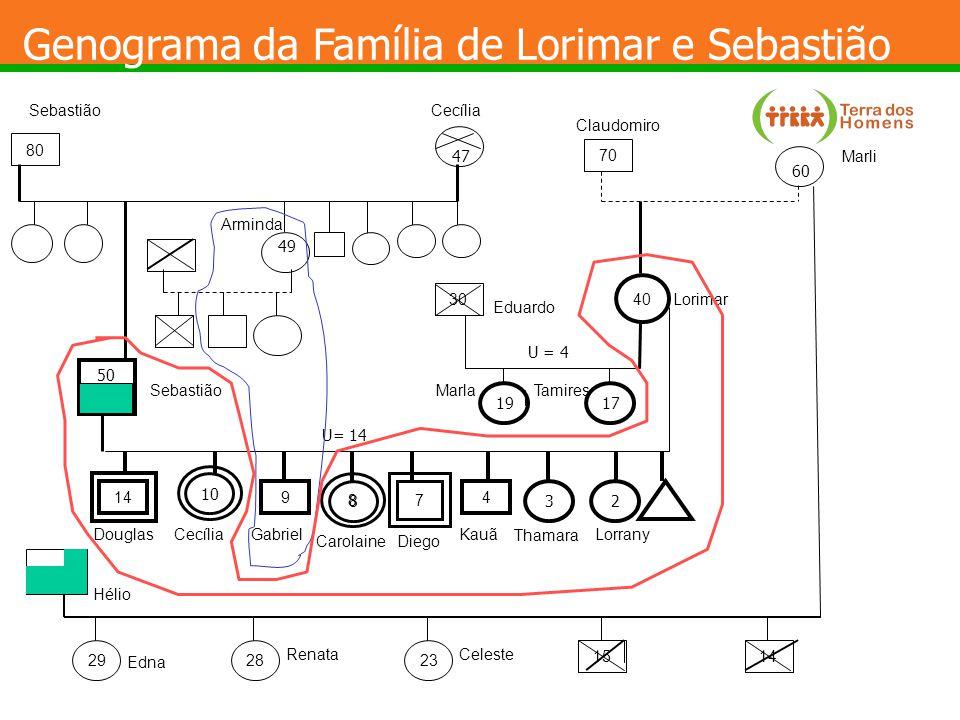 Dinâmica do Sistema AUTONOMIA PERTENCIMENTO A importância da flexibilidade
