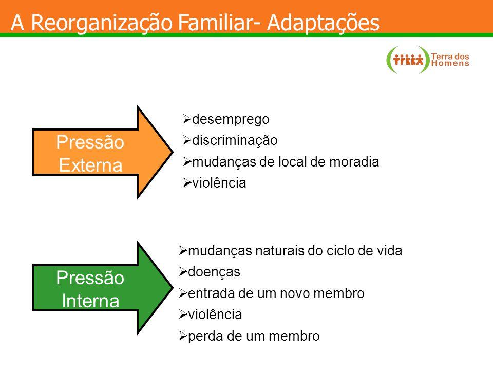 A Reorganização Familiar - Adaptações Pressão Interna Pressão Externa FAMÍLIA ECOMAPAGENOGRAMA