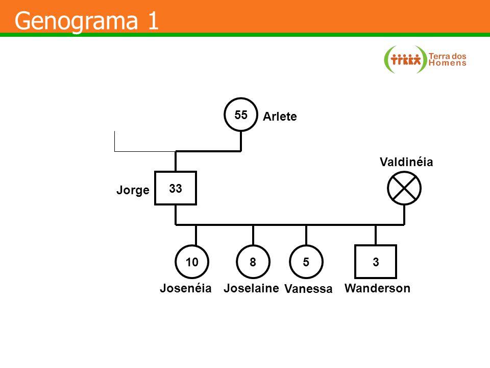 A Reorganização Familiar- Adaptações mudanças naturais do ciclo de vida doenças entrada de um novo membro violência perda de um membro Pressão Interna