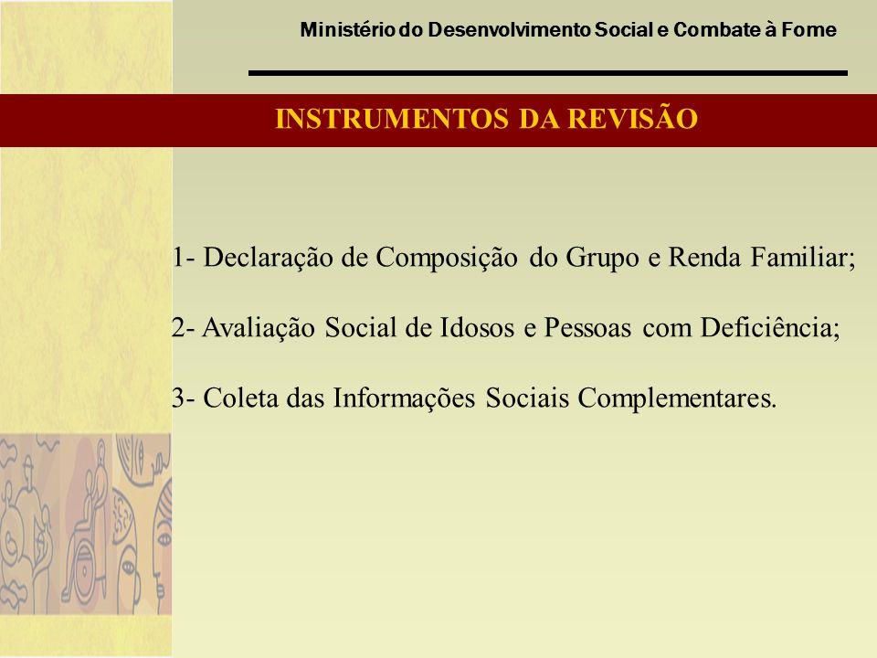 Ministério do Desenvolvimento Social e Combate à Fome 1- Declaração de Composição do Grupo e Renda Familiar; 2- Avaliação Social de Idosos e Pessoas com Deficiência; 3- Coleta das Informações Sociais Complementares.