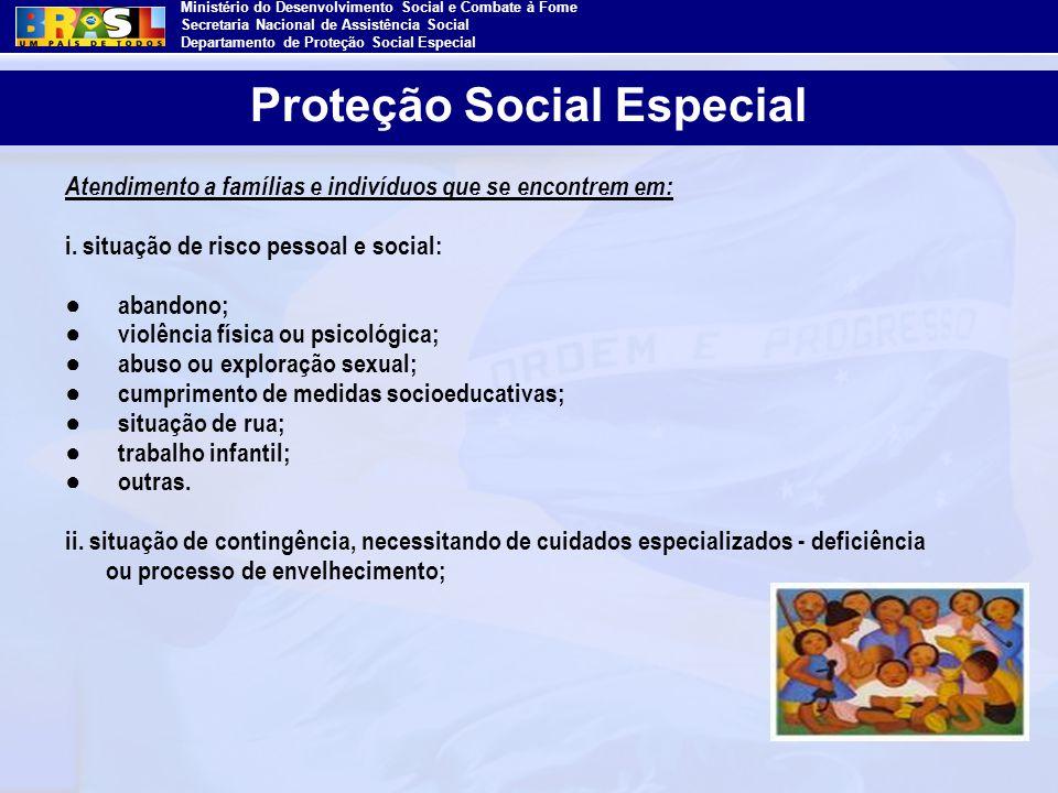 Ministério do Desenvolvimento Social e Combate à Fome Secretaria Nacional de Assistência Social Departamento de Proteção Social Especial Atendimento a