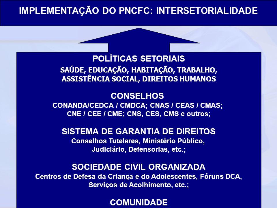 Ministério do Desenvolvimento Social e Combate à Fome Secretaria Nacional de Assistência Social Departamento de Proteção Social Especial IMPLEMENTAÇÃO