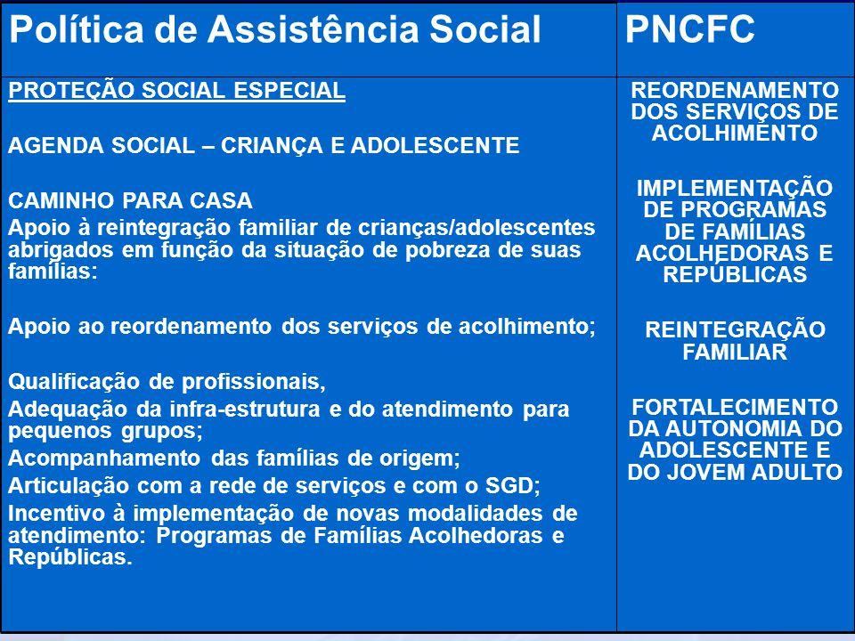 Ministério do Desenvolvimento Social e Combate à Fome Secretaria Nacional de Assistência Social Departamento de Proteção Social Especial REORDENAMENTO