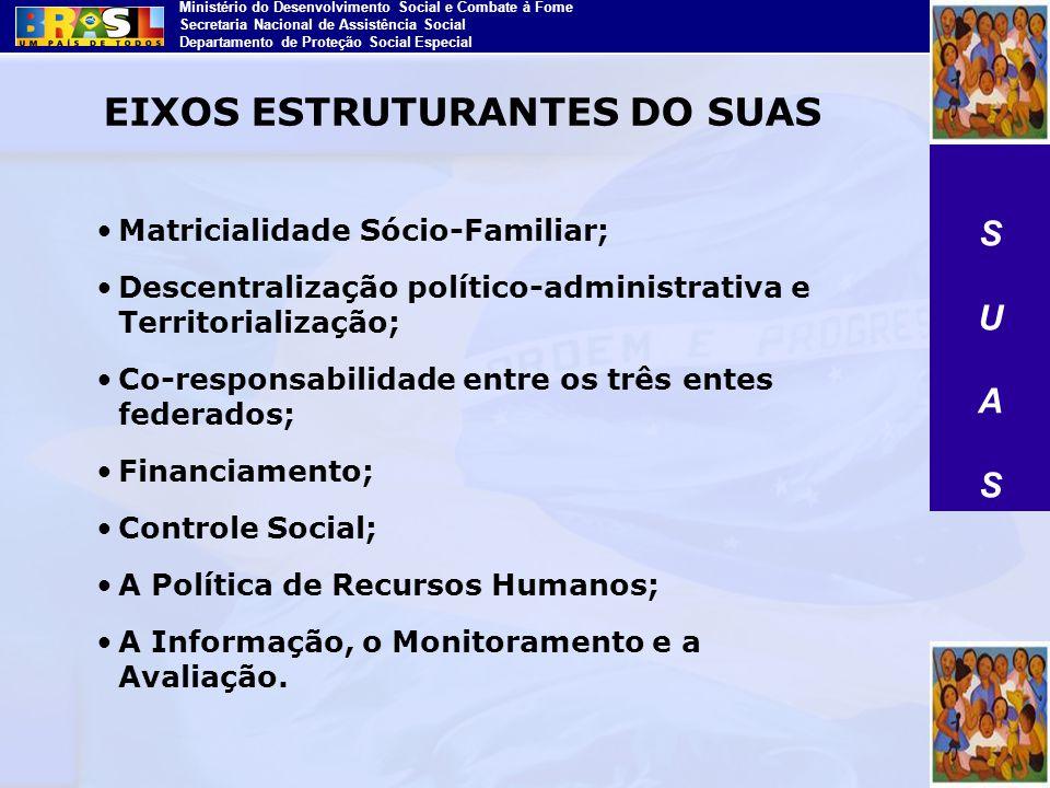 Ministério do Desenvolvimento Social e Combate à Fome Secretaria Nacional de Assistência Social Departamento de Proteção Social Especial Matricialidad