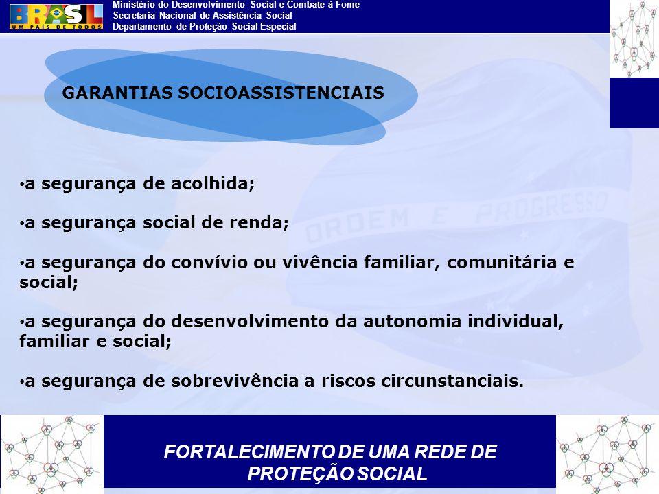 Ministério do Desenvolvimento Social e Combate à Fome Secretaria Nacional de Assistência Social Departamento de Proteção Social Especial a segurança d