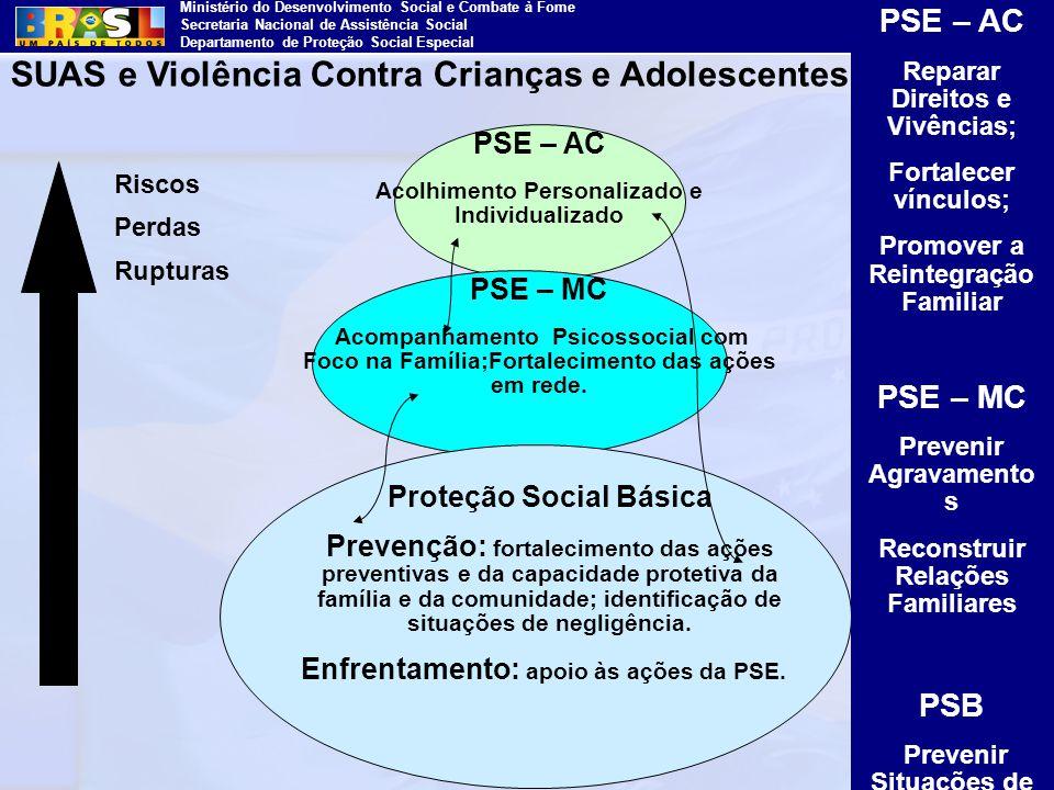 Ministério do Desenvolvimento Social e Combate à Fome Secretaria Nacional de Assistência Social Departamento de Proteção Social Especial Riscos Perdas