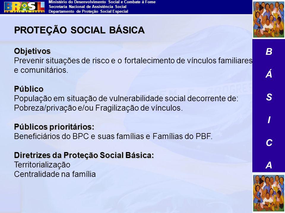 Ministério do Desenvolvimento Social e Combate à Fome Secretaria Nacional de Assistência Social Departamento de Proteção Social Especial PROTEÇÃO SOCI